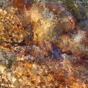 Abstract Water Pattern, Friendly Beaches, Freycinet National Park, Tasmania