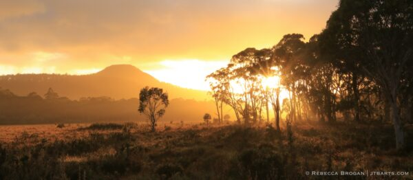 Franklin - Gordon Wild Rivers National Park, Tasmania.