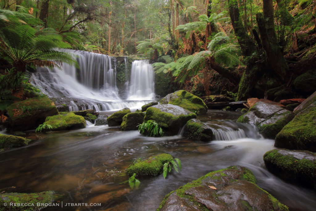 Horseshoe Falls, Tasmania, Mt Field National Park