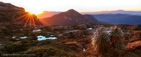 Mt. Eliza plateau sunrise, Mt. Anne Track, Tasmania