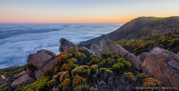 Mt Wellington Kunanyi Dusk Panorama