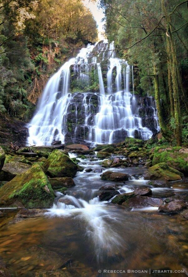Nelson Falls, Nelson Falls Walk, Tasmania