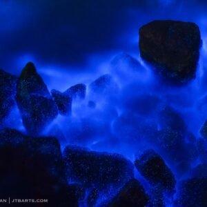 Tasmania bioluminescence. Bioluminescent plankton, Hobart.