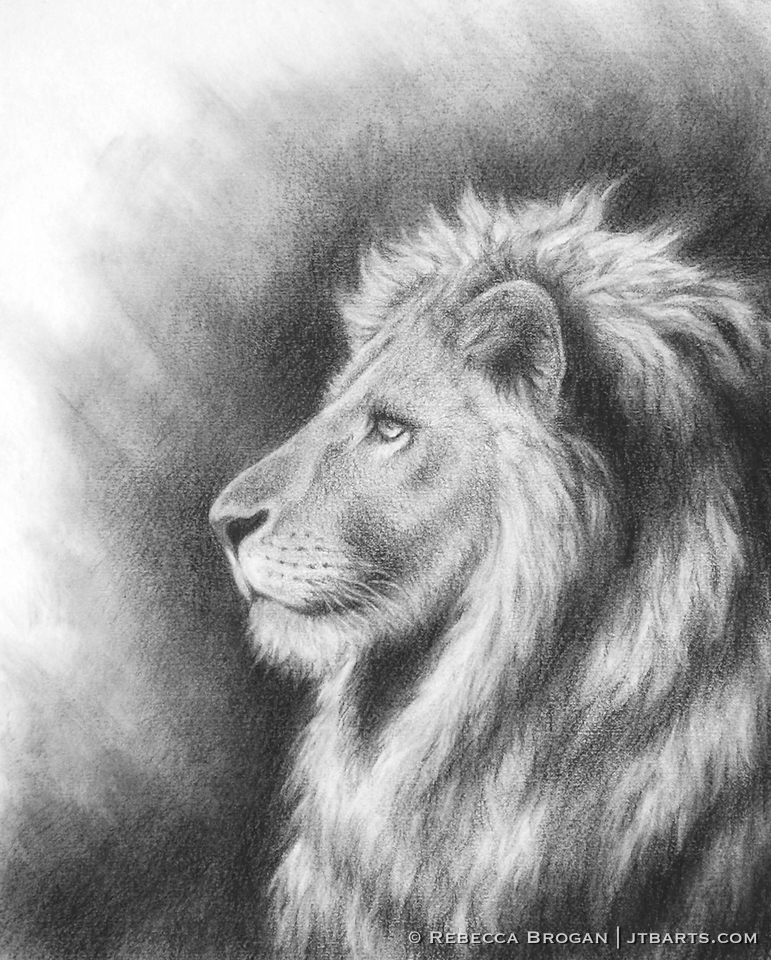The lion of the tribe of Judah Christian artwork. Side view of the lion of Judah.