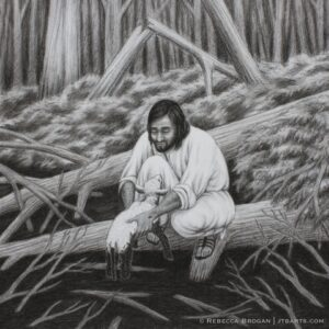 The Parable of The Lost Sheep Luke 15 1 7 Matthew 18 12 14
