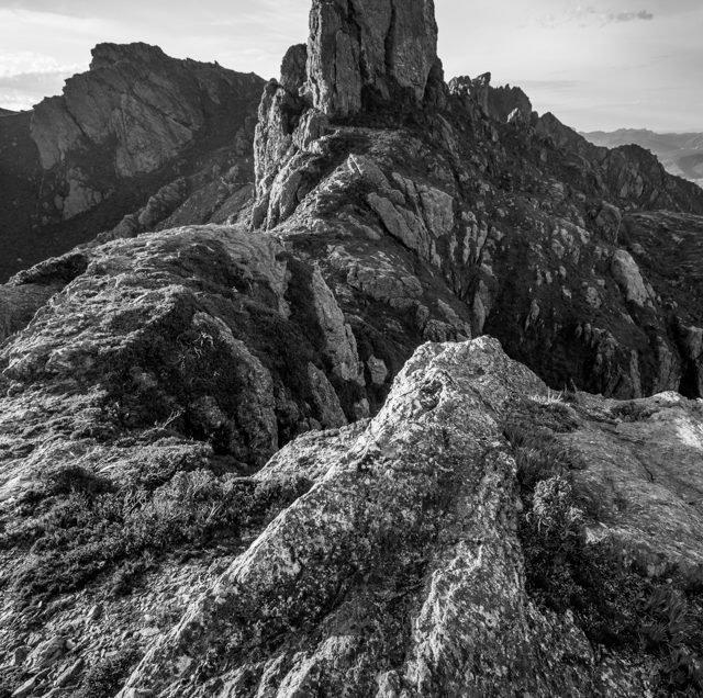Above Lake Cygnus Western Arthurs Range black and white photograph