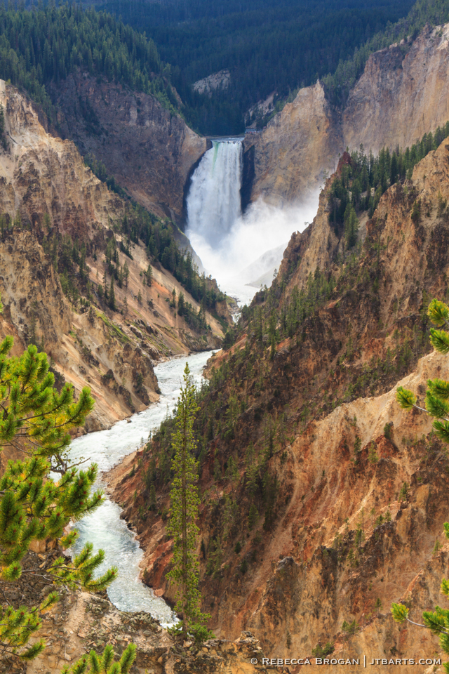 1) Yellowstone Falls from Artist Point (Yellowstone National Park) YNP1